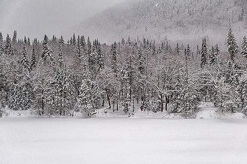 Horizon hivernal