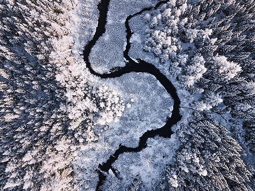 Serpent de glace