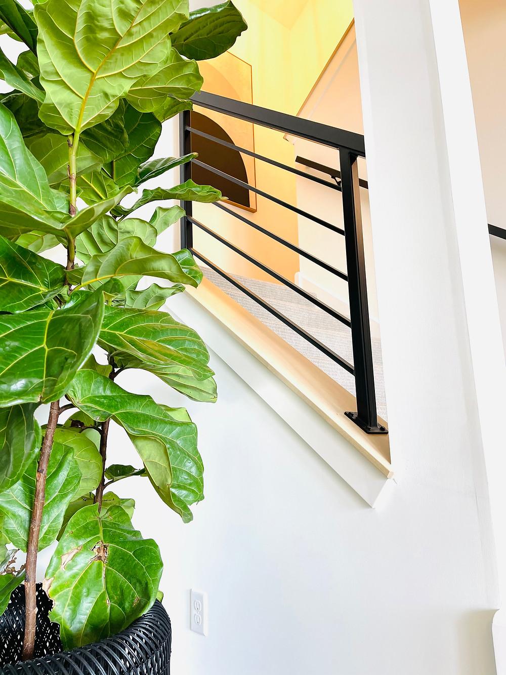 vertical iron railings stairway