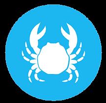 IconoAlergenoCrustaceo-Crustaceans_icon-