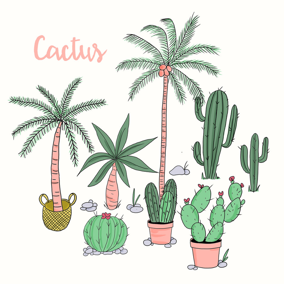 Palms Spring Serie #5