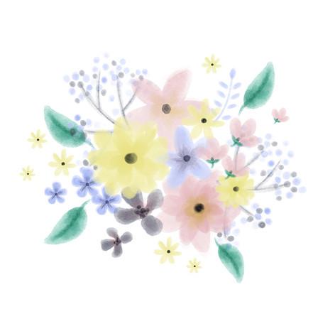 Watercolor flower ameliebroddes©