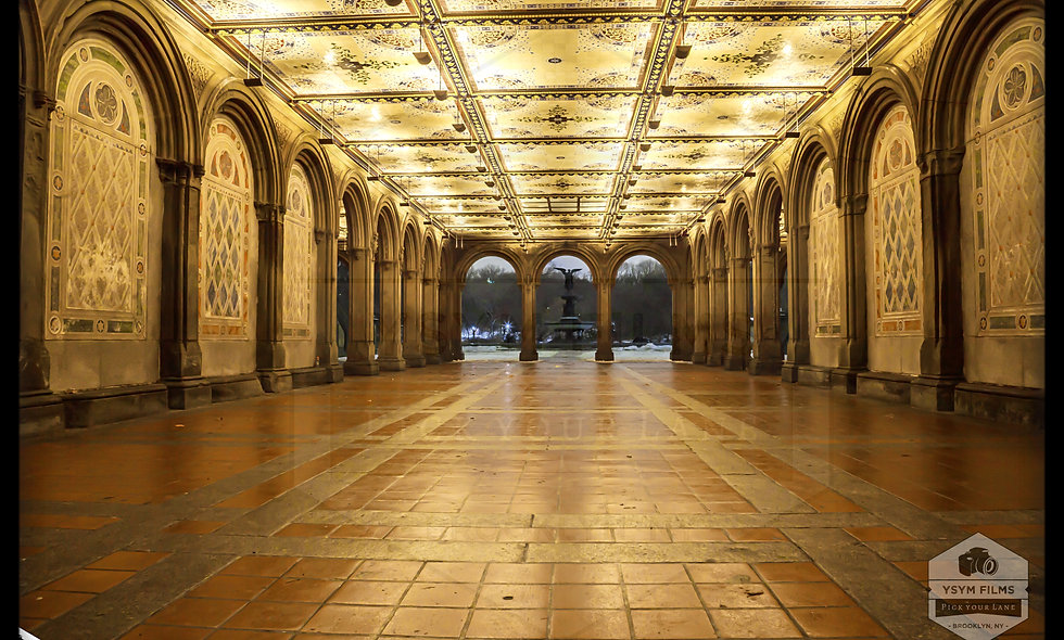 Bethesda Terrace and Fountain.....Central Park. NYC
