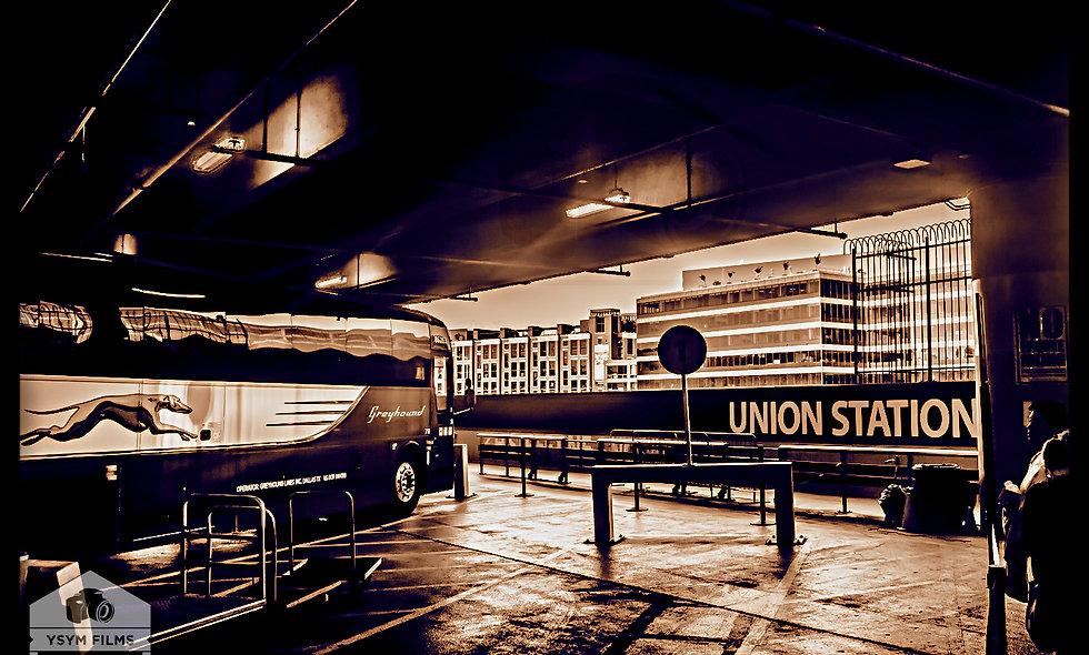 Dramatic Greyhound DC Union Station..... Portrait
