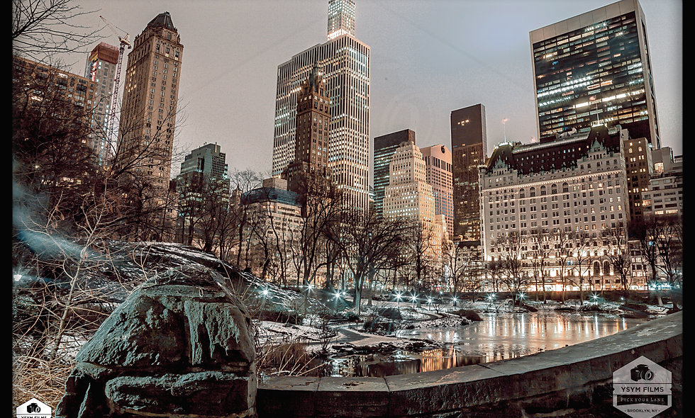 The Plaza Hotel Frozen Pond Bridge Mount Central Park 4