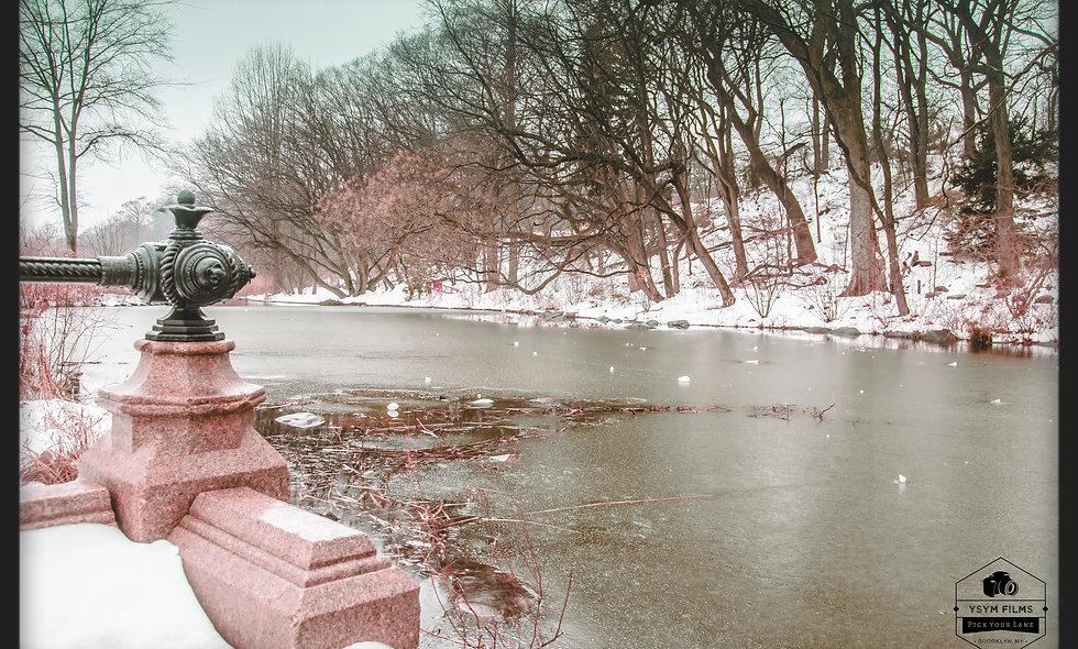 Prospect Park Lakeside... Frozen Lake. Brooklyn, NYC.