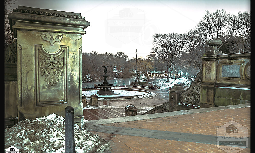Bethesda Terrace & Fountain stairway.....Central Park. NYC
