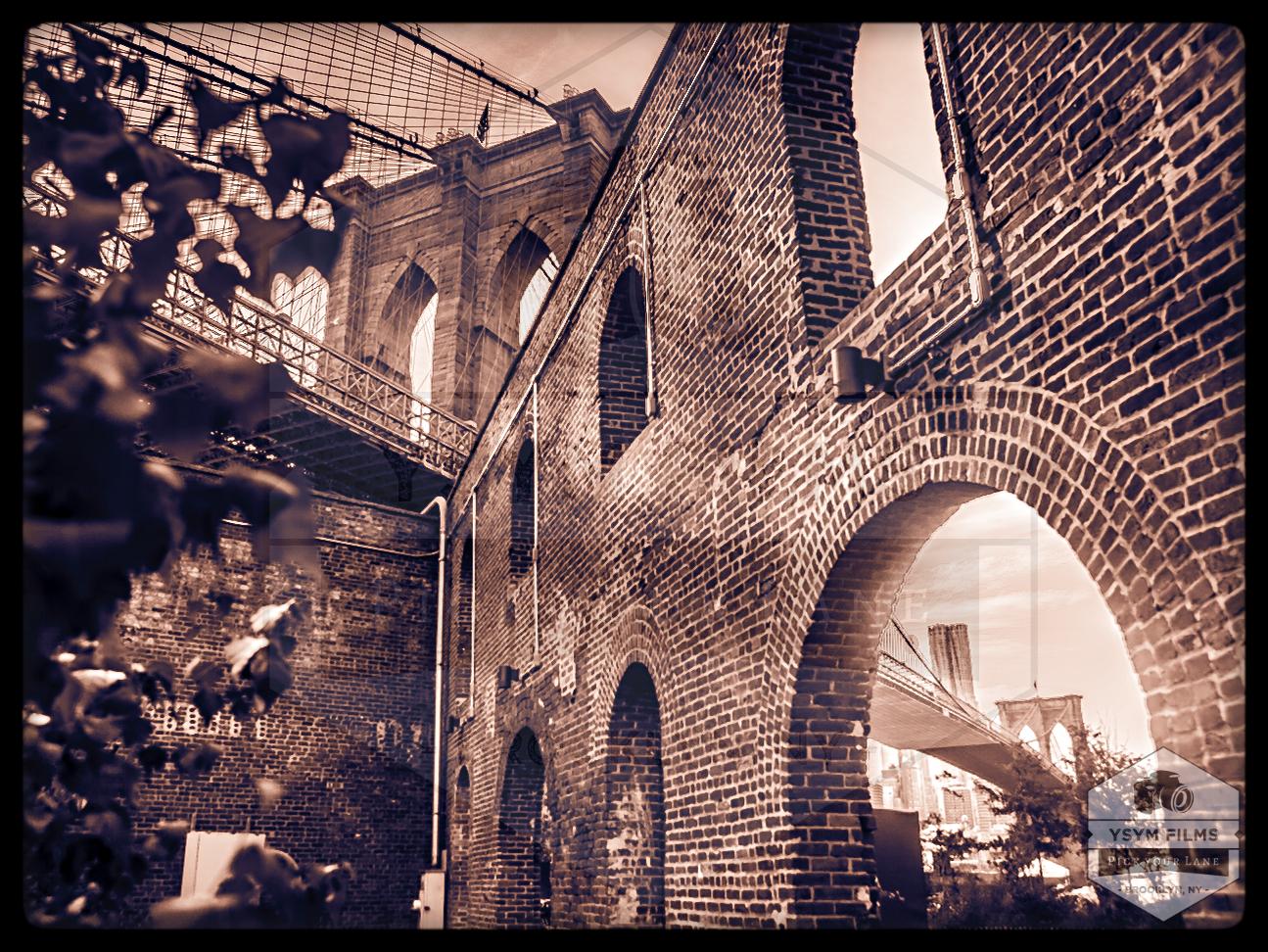 CO CO tone BROOKLYN dumbo Brooklyn bridge