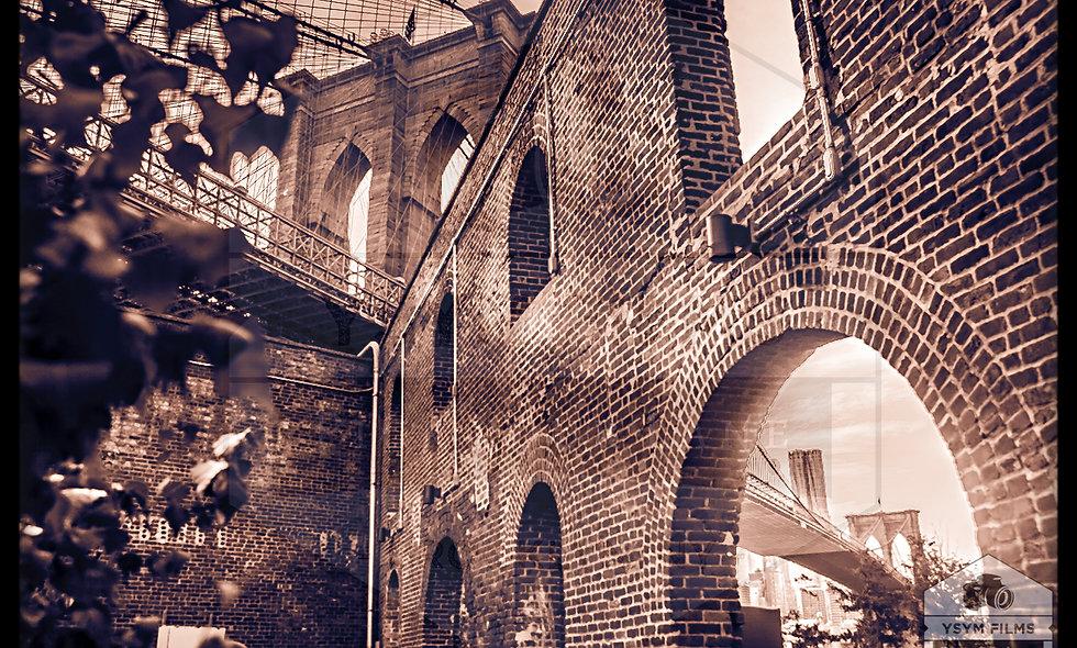 Co Co tone Vintage shot Dumbo, Brooklyn Bridge. Brooklyn NY Portrait