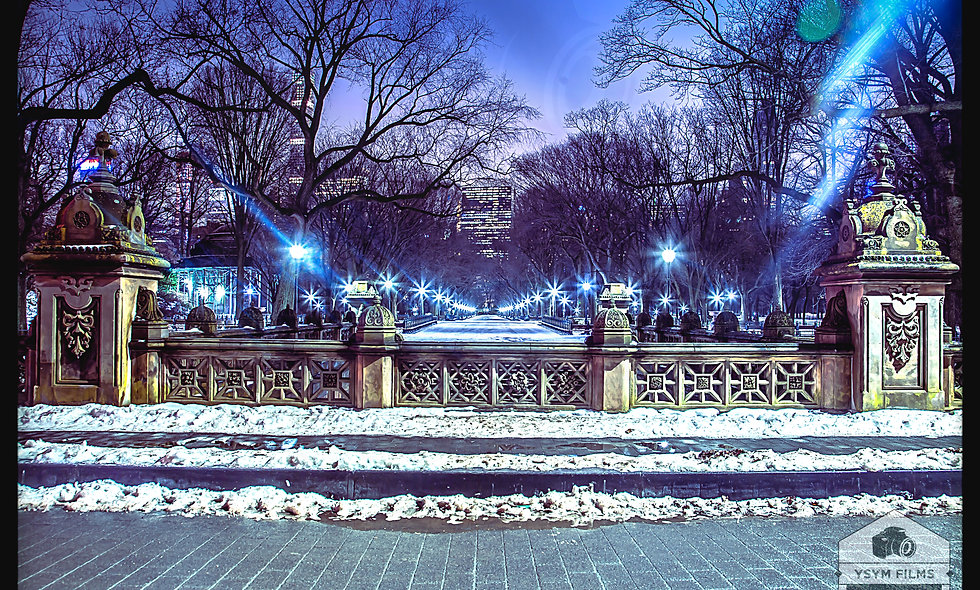 Olmsted & Vaux Way. Central Park. Post card Pack of 20