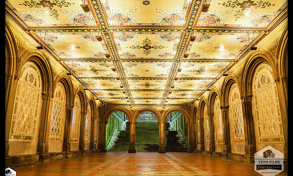 Bethesda Terrace Lower Level stairway.....Central Park. NYC