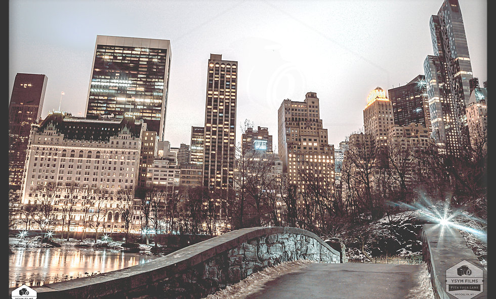 The Plaza Hotel Frozen Pond over the bridge Central Park 5