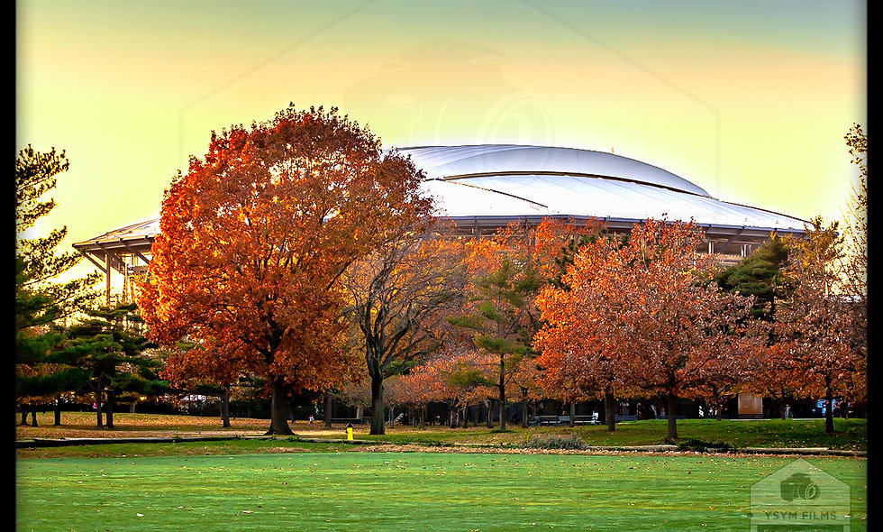 National Tennis center in Queens. Fall shot post cards