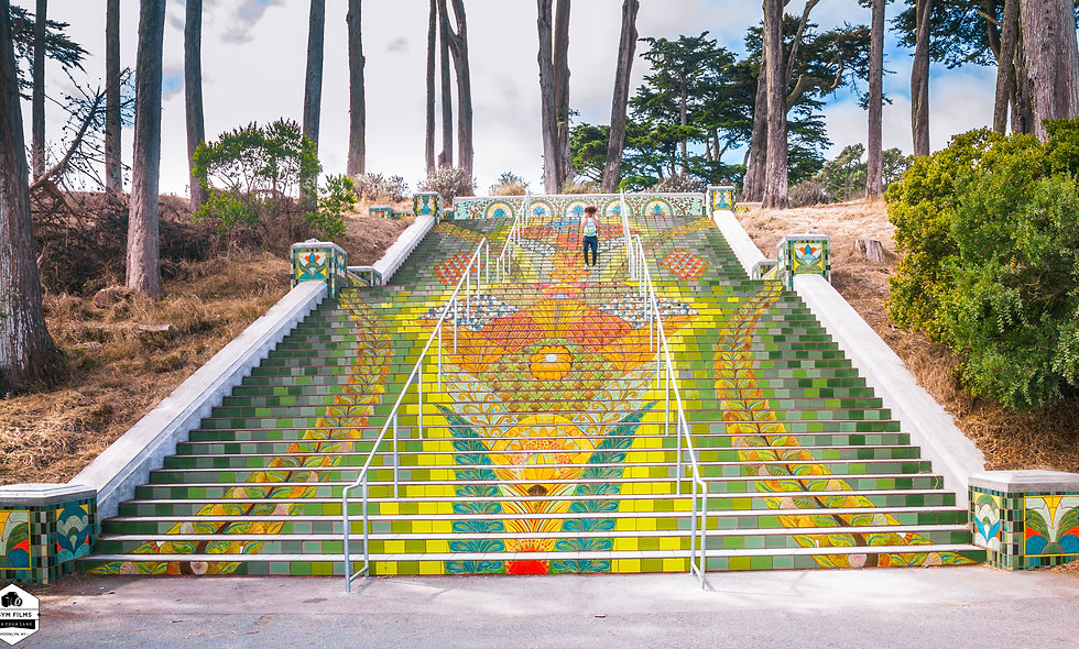 Post card...  Lincoln Park Steps in San Francisco