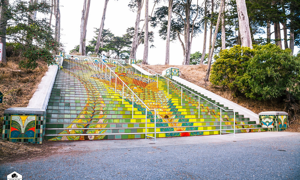 Post card...  Lincoln Park Steps in San Francisco, California