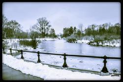 Frozen lake Prospect park lakeside Brooklyn 4