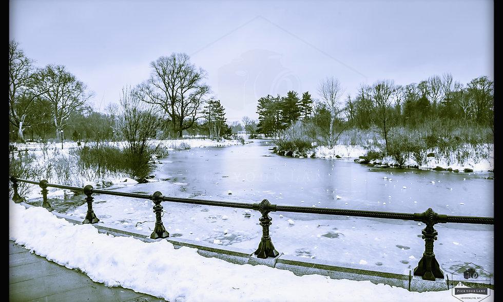 "Prospect Park Lakeside... ""Frozen Blues"". Brooklyn, NYC."
