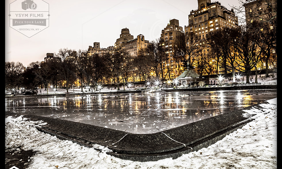 Conservatory Water Area in Central Park..... East Side Postcard