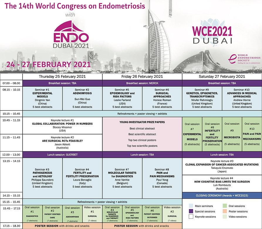WCE2021_programme-at-a-glance.jpg