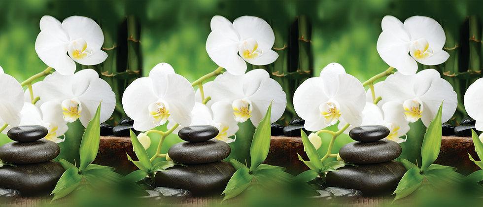 Фартук для кухни Белая орхидея