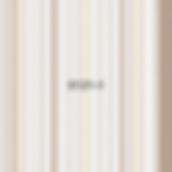 Панель стеновая пластиковая Классик коричневый