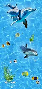 карибы дельфины.jpeg