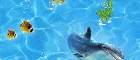 Панель пластиковая Карибы Дельфины
