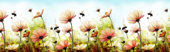 Пчелки.jpg