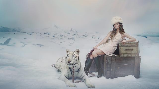 Homenaje al frío (2016)