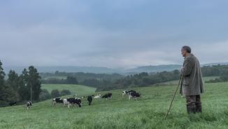 Primera leche de pastoreo certificada (2017)