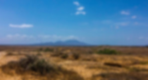 Guajira desert