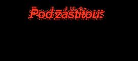 Záštita primátoraKE  transparent S.png