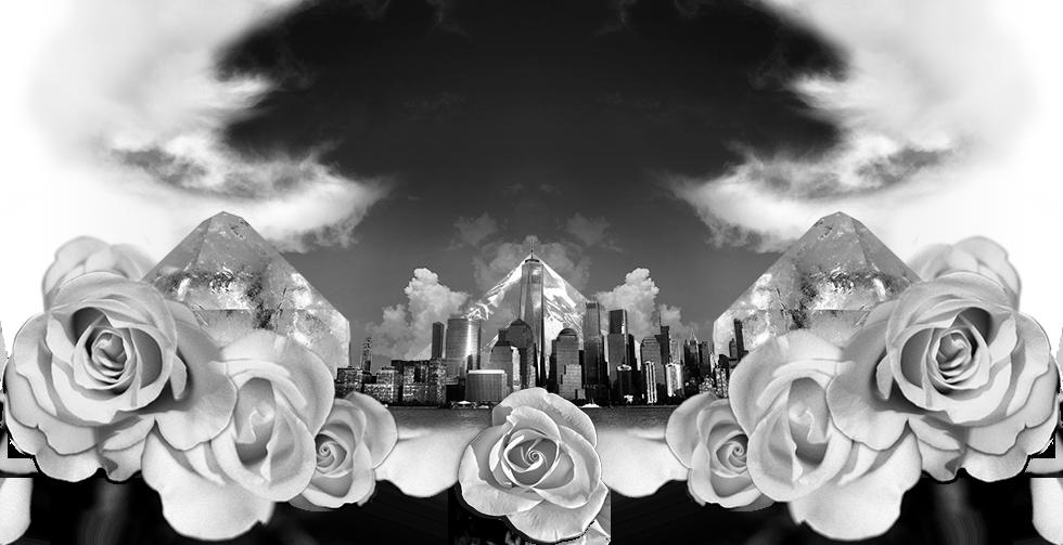 PBNYC_skyline_header980.png