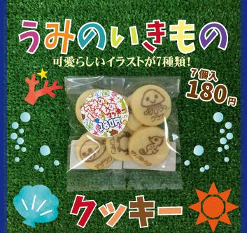 「うみのいきものクッキー」販売中!