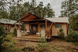 Camping in de bossen