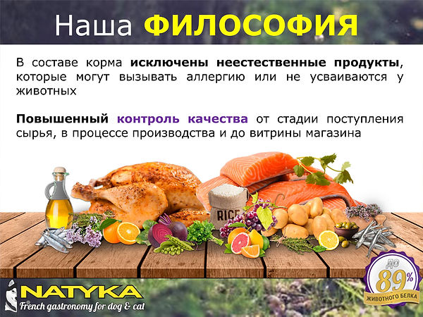 Natyka  презентация-6.jpg