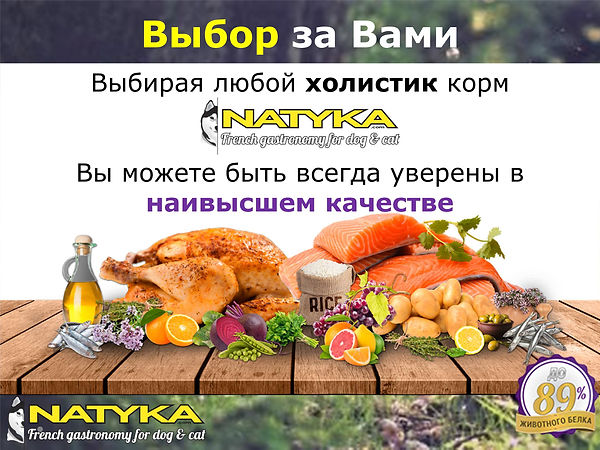 Natyka  презентация-21.jpg