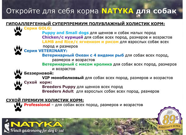 Natyka  презентация-24.jpg