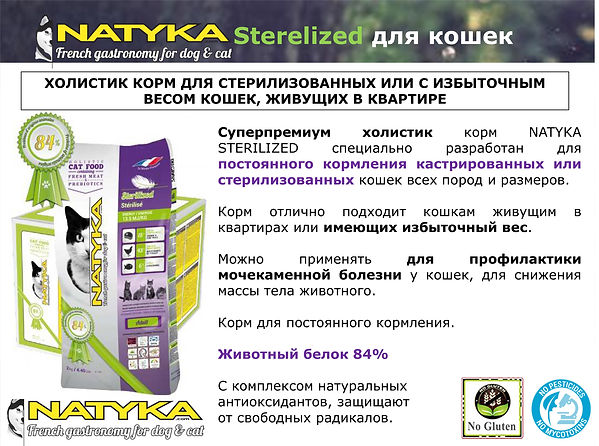 Natyka  презентация-50.jpg