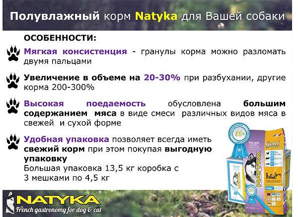 Natyka  презентация-12.jpg