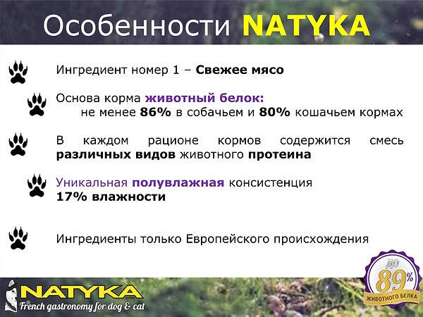 Natyka  презентация-3.jpg