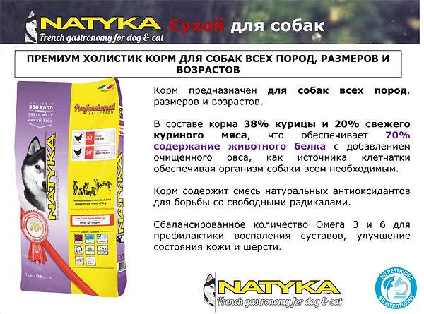 Natyka  презентация-38.jpg