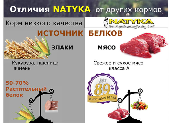Natyka  презентация-15.jpg