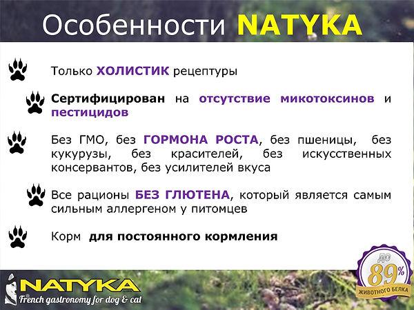 Natyka  презентация-4.jpg