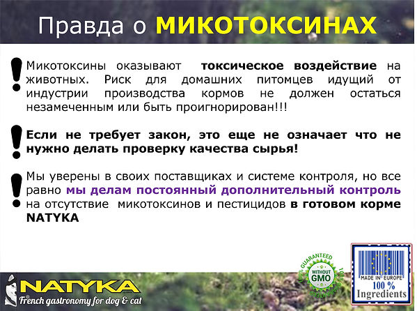 Natyka  презентация-19.jpg