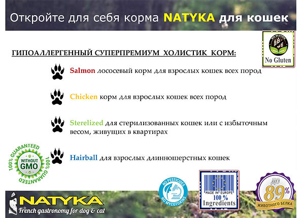 Natyka  презентация-45.jpg