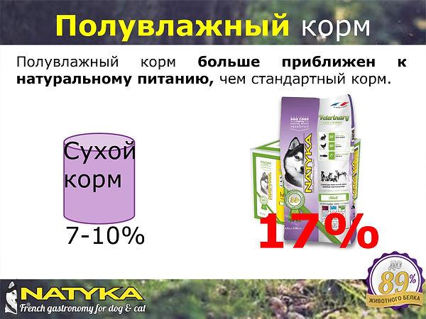 Natyka  презентация-10.jpg