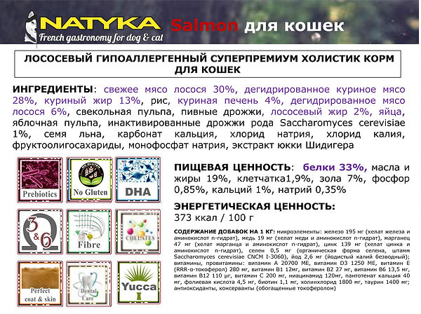 Natyka  презентация-47.jpg