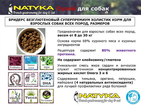 Natyka  презентация-40.jpg