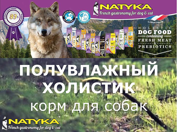 Natyka  презентация-9.jpg